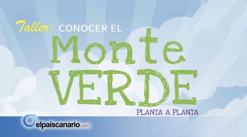 """2 MAYO. Se abre el plazo de inscripción en el Taller """"Conocer el Monteverde: planta a planta"""""""