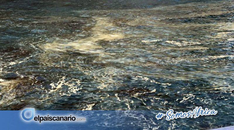"""17 AGOSTO. Asamblea para tratar la """"crisis de las microalgas"""" (Plaza de la Candelaria, Santa Cruz de Tenerife)"""