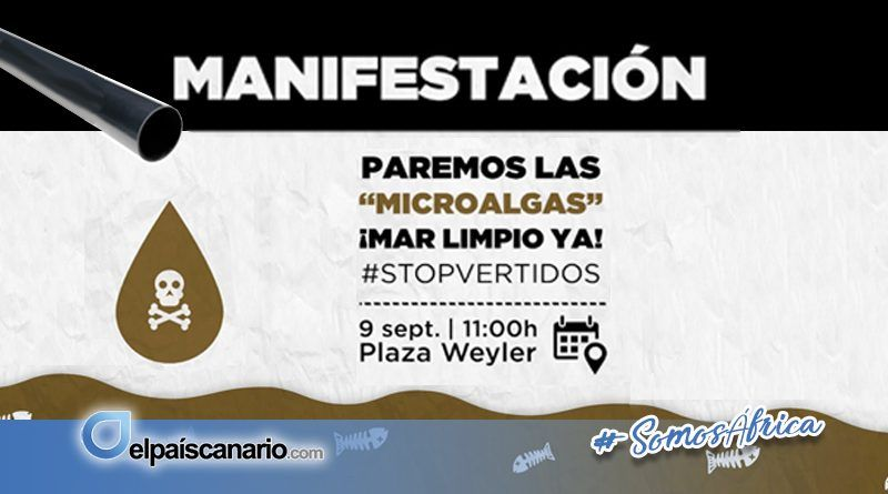 """9 SEPTIEMBRE. A las 11 horas, manifestación desde la Plaza de Weyler de Santa Cruz de Tenerife: """"¡más nunca """"microalgas"""" en nuestras playas!"""""""