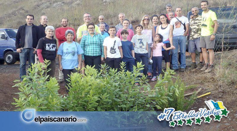 28 OCTUBRE. Se llevará a cabo una Plantación de Laurisilva en la Montaña de Firgas en compensación de la Huella Ecológica de la RUTA DORAMAS