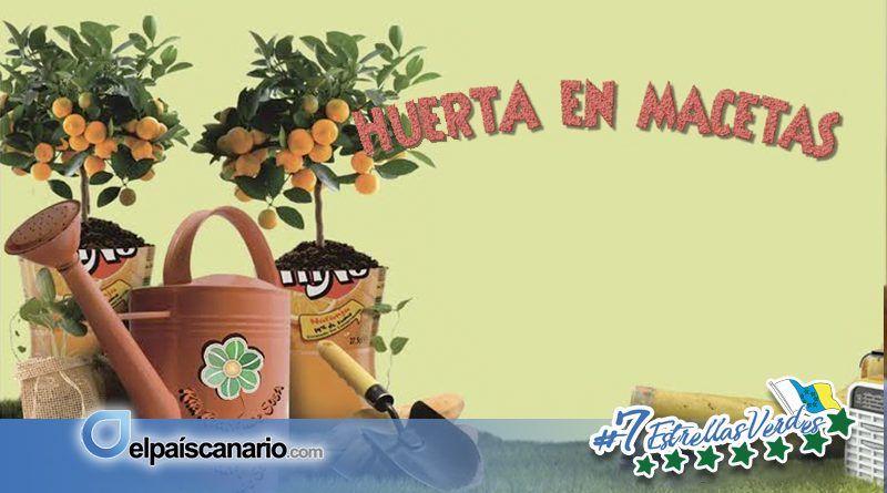 Taller de Huerta en Maceta, nueva propuesta formativa de LA VINCA EeA en Firgas