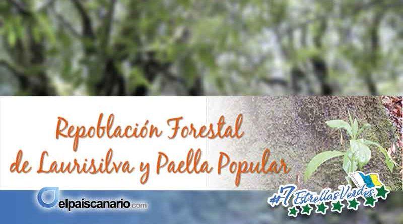 11 FEBRERO. LA VINCA programa una plantación de laurisilva en la Montaña de Firgas