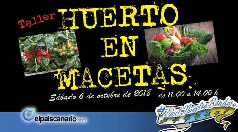 Nueva edición del Taller de Huerto en Macetas para el sábado 6 de octubre