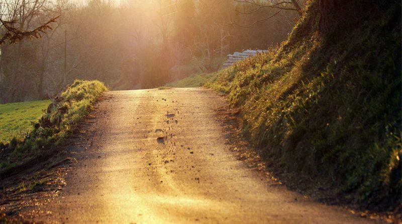 El camino del amor | Elpaíscanario.com