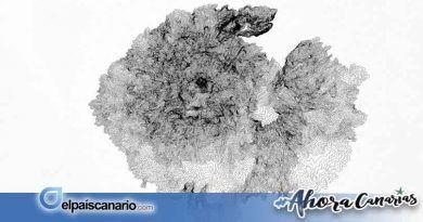 """Se abre el plazo para inscribirse en el """"Taller: Nacimiento de una isla, Gran Canaria: Primer Ciclo Eruptivo"""""""