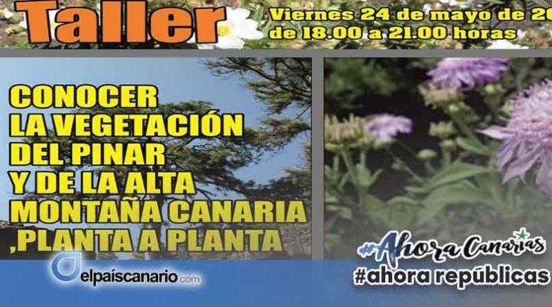 """Se abre el plazo para inscribirse en el """"Taller: Conocer la vegetación del Pinar y de la Alta Montaña Canaria, planta a planta"""", que se celebrará en Firgas"""