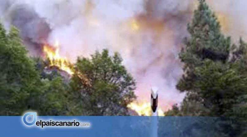 El Gobierno de Canarias declara nivel 2 y asume la dirección del nuevo incendio forestal en Gran Canaria
