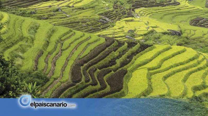 """1-16 OCTUBRE. Exposición Fotográfica """"CHINA. TRES COLORES"""" de Alejandro Melián, en el Centro Municipal de Cultura de Arucas"""