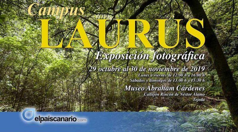 """Noviembre Forestal 2019 se acerca a Tejeda con la Exposición Divulgativa """"Campus LAURUS"""""""