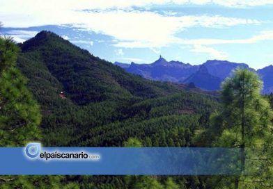Gran Canaria: Ben Magec rechaza la construcción de un radio telescopio en Tamadaba