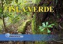 """23 ENERO. Se inaugura en La Casa Verde de Firgas la exposición divulgativa """"ISLA VERDE – Pisos de Vegetación de Canarias"""""""