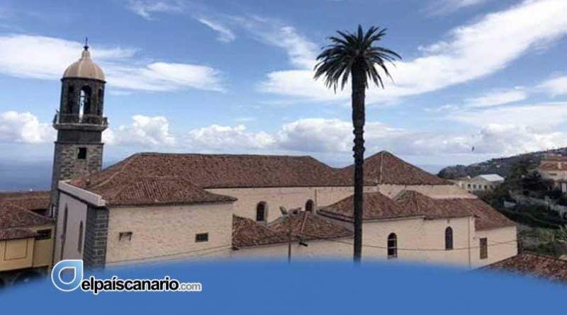 La Orotava: denuncian la tala de una palmera de Santo Domingo