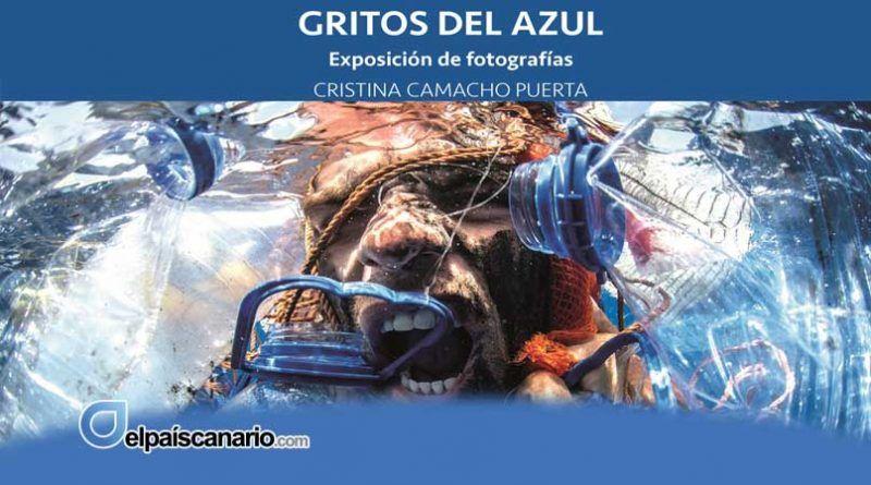"""La Exposición """"GRITOS DEL AZUL"""" de Cristina Camacho Puerta, en el Centro Municipal de Cultura de Arucas, del 7 al 28 de octubre"""