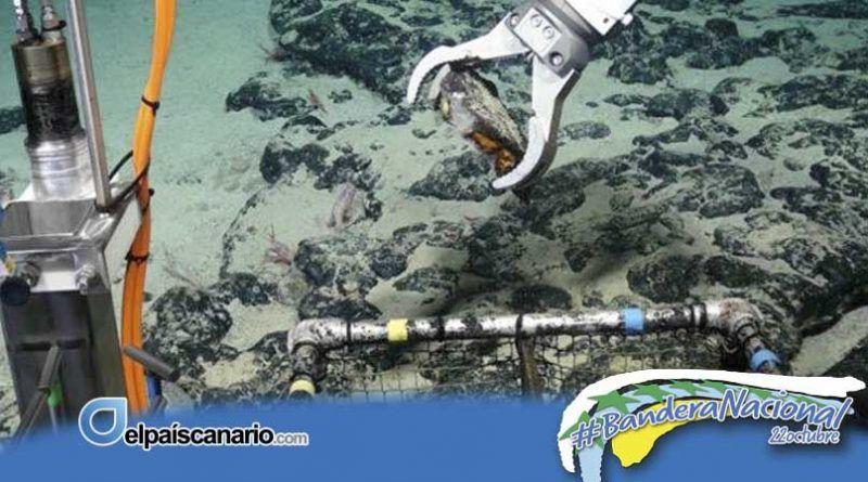 Las denuncias de Ecologistas en Acción sobre las investigaciones de minería submarina al sur de Canarias llegan al Congreso de los Diputados