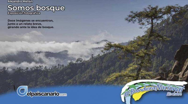 """Noviembre Forestal llega a Arucas con la Exposición Fotográfica """"SOMOS BOSQUE"""" de Alejandro Melián, del 4 al 20 de noviembre"""