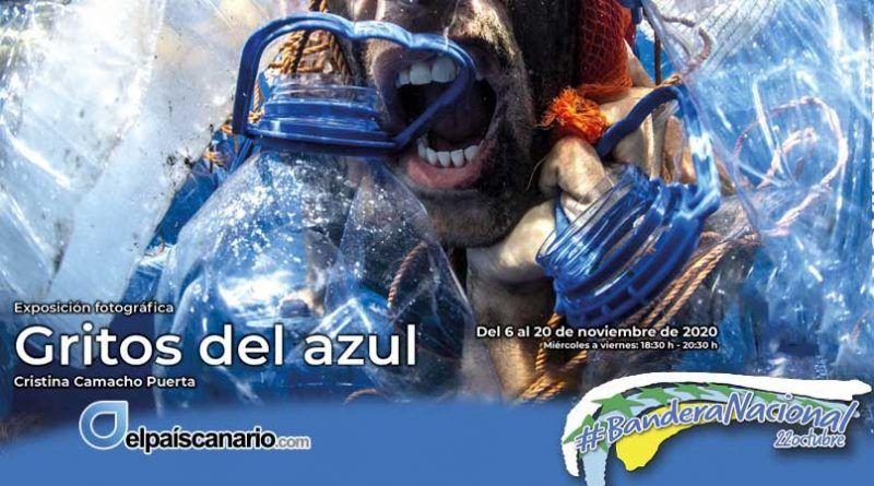 """La Exposición """"GRITOS DEL AZUL"""" de Cristina Camacho Puerta, en La Casa Verde de Firgas, del 6 al 20 de noviembre"""